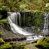 Water cascades through Mount Field National Park, Tasmania